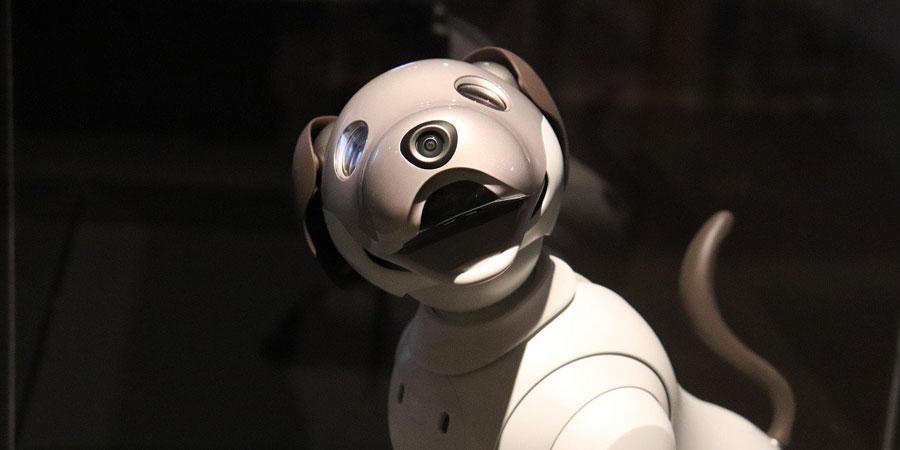 Un robot guía para personas invidentes